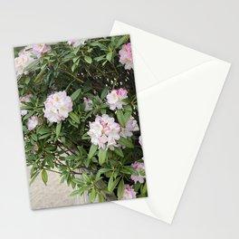 Good Morning Ladys Stationery Cards