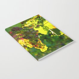 Wine Grapes in the Sun Notebook