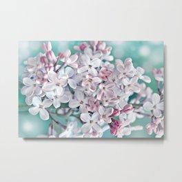 Lilac pink macro 024 Metal Print