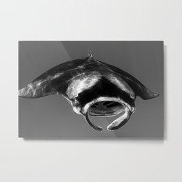 Manta Ray Black & White Metal Print