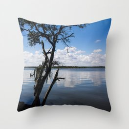 Peaceful Afternoon Throw Pillow