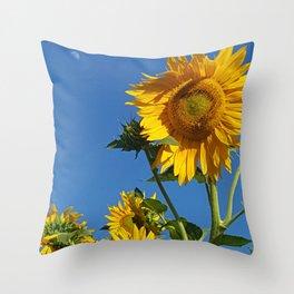 Sunflower Bee & Moon Throw Pillow