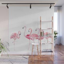 Flamingo Farm- Tropical Animal Bird World Wall Mural