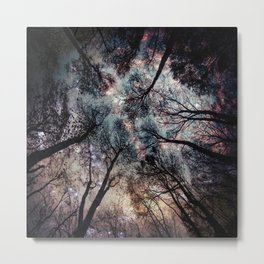 Starry Sky in the Forest Metal Print