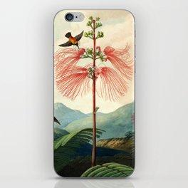 Large flowering sensitive plant. iPhone Skin