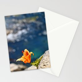 Beauty by the Waters Stationery Cards