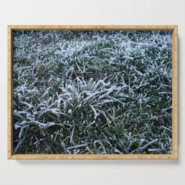 Frosted Grass Serving Tray