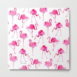 floridian flamingos - white Metal Print