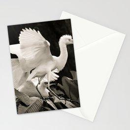 White bird dance 3 Stationery Cards