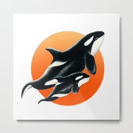 Orca Whale Family Red Circle Art Metal Print