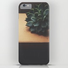 Succulent (2) Slim Case iPhone 6 Plus