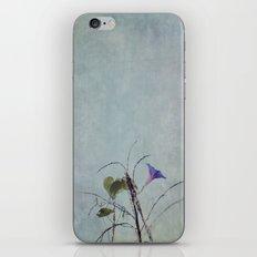 Morning Glory Flower iPhone & iPod Skin