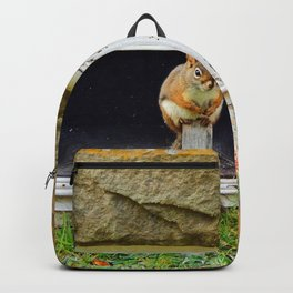 Church Squirrel Backpack