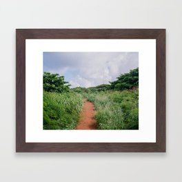 Path in Kauai Framed Art Print