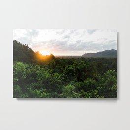 Daintree Sunset Metal Print
