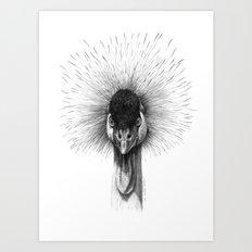 Black Crowned Crane G2012-065 Art Print