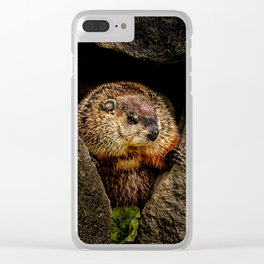 Groundhog Day Clear iPhone Case