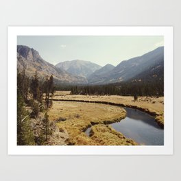 Rocky Mountain Meadow Kunstdrucke