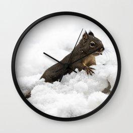 Winter Squirrel II -  Cute Wildlife Animals Nature Photography Wall Clock