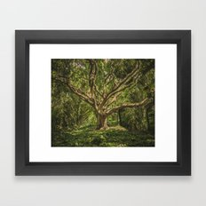 Spirits inside the wood Framed Art Print