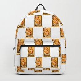Hey squirrel friend Backpack