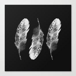Three feathers on black background Canvas Print