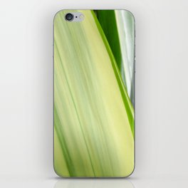 Natural Lines - Light Green iPhone Skin