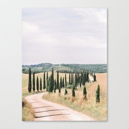 Cypress Trees lining a Winding Road in Tuscany | Italy Travel Photography | Europe Wanderlust Canvas Print