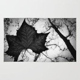 autumn time! Rug