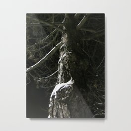 The Tree Shivered Metal Print