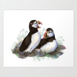 Watercolor Puffin Bird Couple Art Print