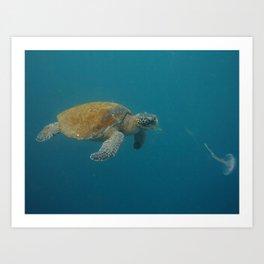 Eat all the jellyfish! Art Print