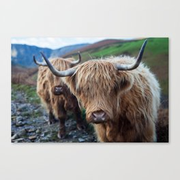 On the hills Canvas Print