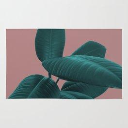 Ficus Elastica #9 #AshRose #decor #art #society6 Rug
