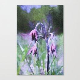 Prairie Smoke Canvas Print