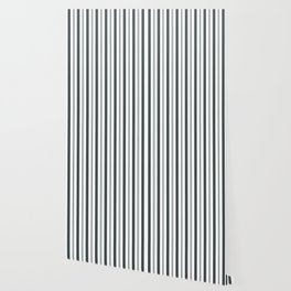 PPG Night Watch Pewter Green & White Wide & Narrow Vertical Lines Stripe Pattern Wallpaper