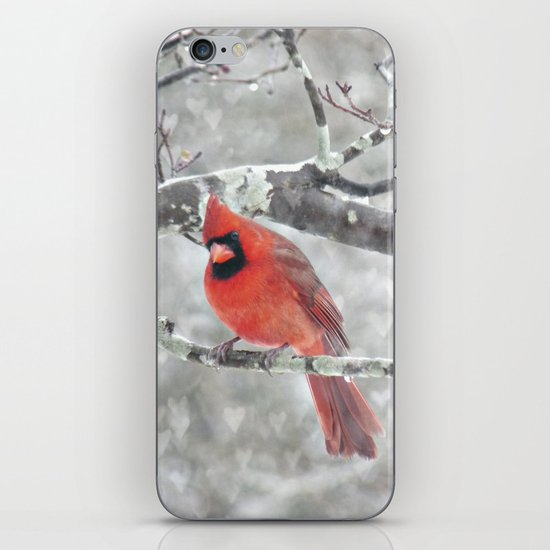 Color My Winter iPhone & iPod Skin