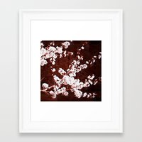 cherry blossoms Framed Art Prints featuring Cherry Blossoms by Paula Belle Flores