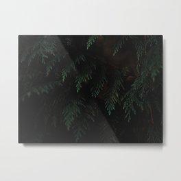 Moody Evergreen No.01 Metal Print