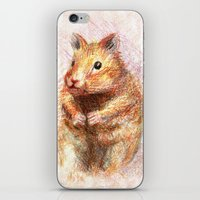 hamster iPhone & iPod Skins featuring hamster by dace k