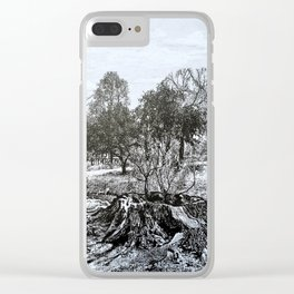 The Giving Tree, Congress Park, Saratoga Springs NY, Broadway, shel Silverstein Clear iPhone Case