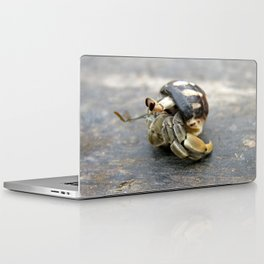 Hermit Crab Laptop & iPad Skin