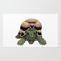 tortoise Area & Throw Rugs featuring Happy Tortoise by Ken Coleman
