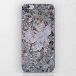 freezed iPhone Skin