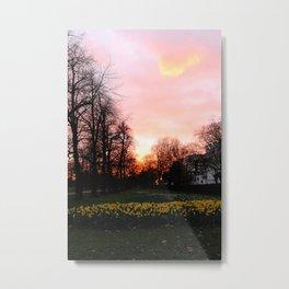 Spring magic hour Metal Print