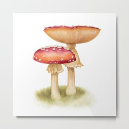 Mushroom Painting | Fly Agaric | AMANITA MASCARA | Watercolour Metal Print
