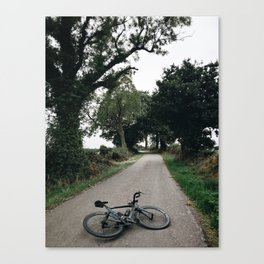 cycling wild Canvas Print