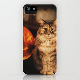 Cat by Karly Jones iPhone Case