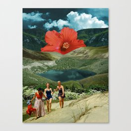 Valley of the flower Canvas Print