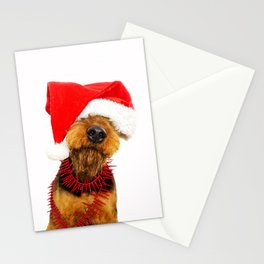 Airedale Terrier Christmas Photography Stationery Cards